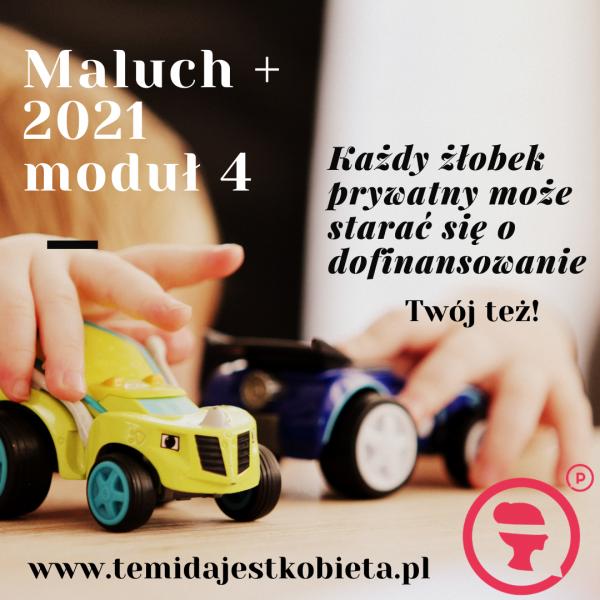 Wniosek Maluch + 2021